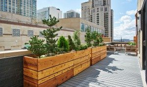 walton residence chicago 3 bedroom penthouse patio deck gallery